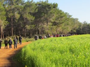 Trekking in North Cyprus