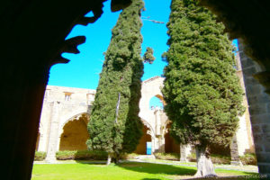 Bellapais Monastery 6 - North Cyprus Pictures