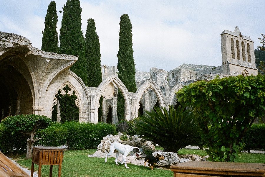 Bellapais_Abbey_North_Cyprus