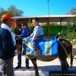 Buyukkonuk Festival 6 - North Cyprus Pictures
