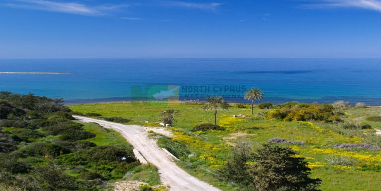 North Cyprus International - PBV - North Cyprus Property 7