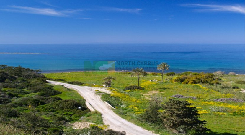 North Cyprus International - PBV - North Cyprus Property 7