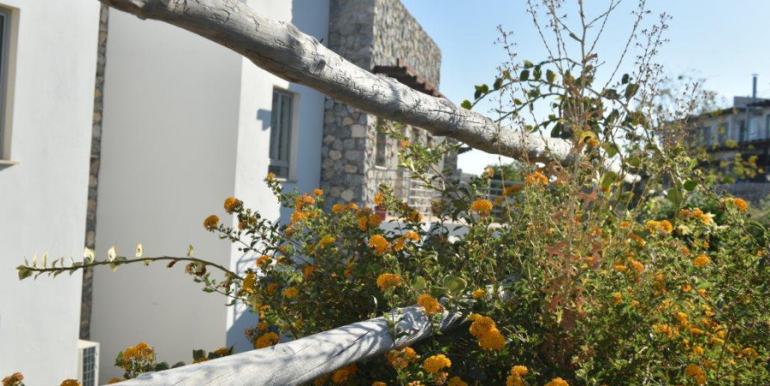 Palm View Cliff Apartments Site Pictures 10 - Northern Cyprus Property