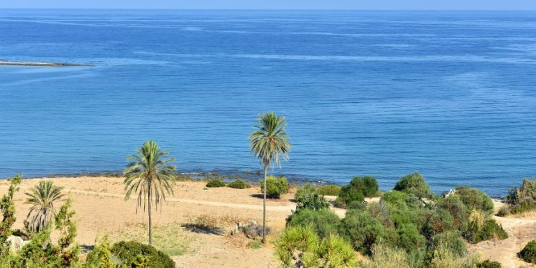 Palm View Executive Apartments 2 - North Cyprus Property