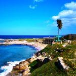 Oasis of North Cyprus - North Cyprus International