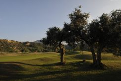 Korineum Golf Course 3 - North Cyprus