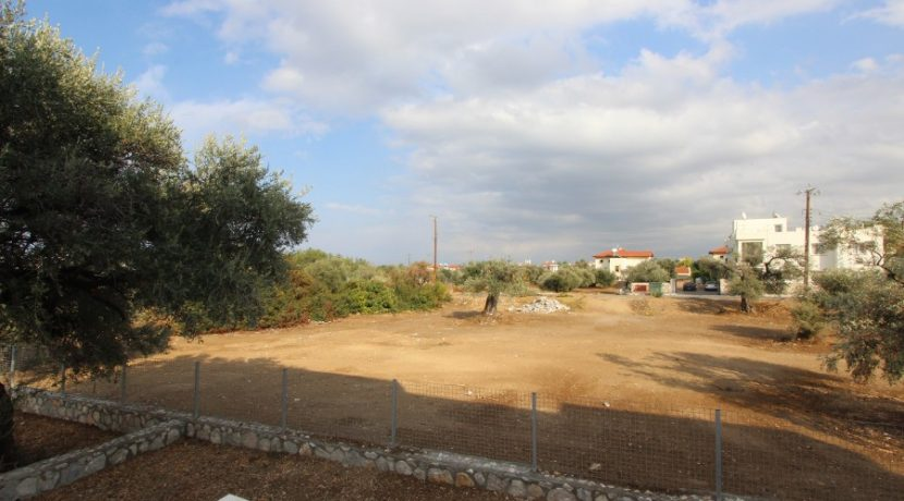 Catalkoy-Olive-Tree-Semi-Detached-Villa-3-North-Cyprus-Property