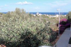 Paradise Hilside Apartments - North Cyprus Properties 4