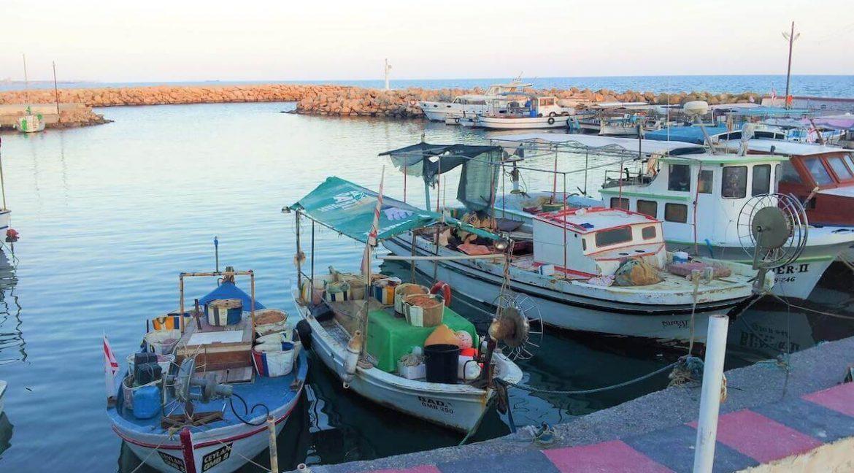 East Coast Luxury Pearl Villas - North Cyprus Property 8
