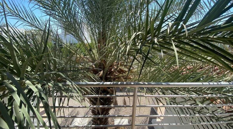Esentepe Turtle Beach & Golf Seaview Villa 4 Bed - North Cyprus Property Z22